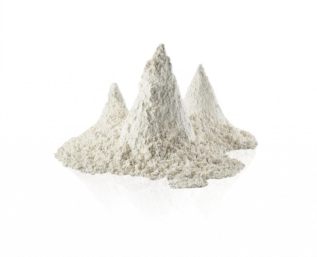 poudre-de-lactoserum-1170-